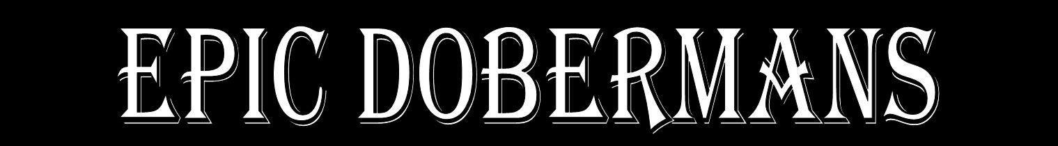 Epic Dobermans